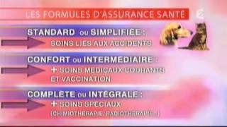 Faut-il Assurer Son Chien ? Emission France 2
